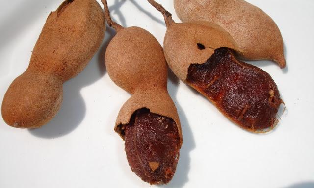 ¿El Tamarindo es Bueno Para la Gastritis?3