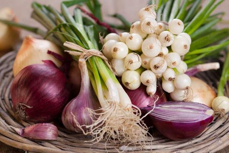 ¿La Cebolla es Buena Para la Gastritis?3