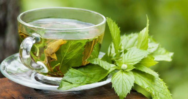 ¿La Hierbabuena Sirve Para la Gastritis?3