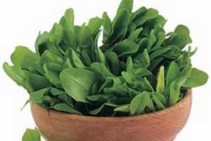 ¿La Achicoria es Buena Para la Gastritis?2