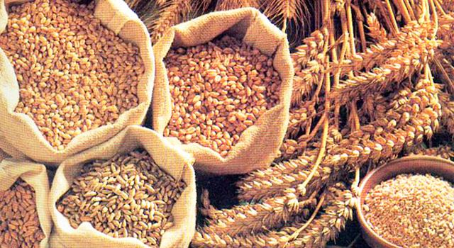 ¿Qué Cereales Integrales Sirven Para la Gastritis?