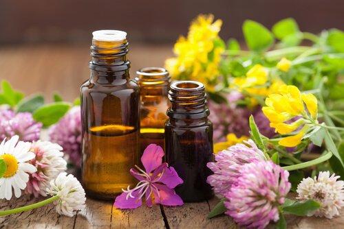 ¿Cómo Usar Aceites Esenciales Para la Gastritis?
