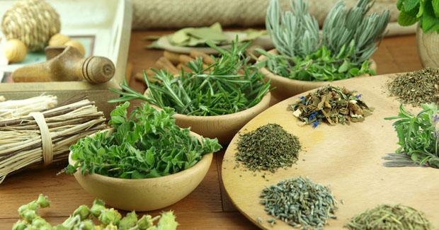 ¿Qué Hierbas Aromáticas Son Buenas Para la Gastritis?