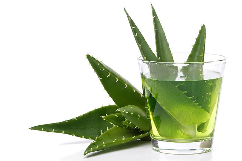 Cómo Tomar el Aloe Vera Para la Gastritis