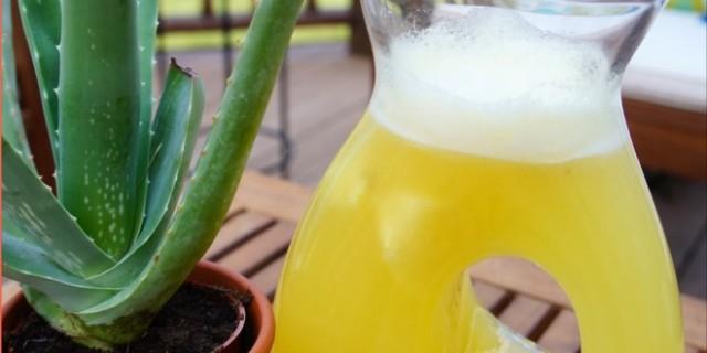 Cómo Tomar el Aloe Vera Para la Gastritis2