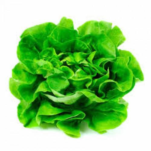 Lucha Contra la Gastritis de Forma Natural: Los Alimentos Que Curan la Gastritis3